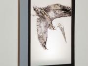 Brown-Pelican-Light-Box,-Cyndi-Strid,-Artist.WEB