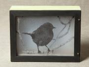 Kirkland-Warbler-Light-Box,-Cyndi-Strid,-Artist.WEB