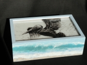 Pelican-Glass-Box-CStrid.WEB