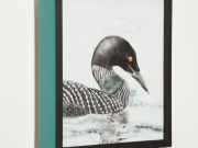 Common-Loon-Light-Box,-Cyndi-Strid,-Artist.WEB