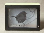 Kirkland-Warbler-Light-Box,-Cyndi-Strid,-Artist.WEB