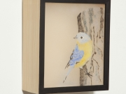 Western-Blue-Bird-Light-Box,-Cyndi-Strid,-Artist.WEB