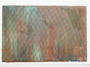 Netted-Salmon,-Cyndi-Strid,-Artist.WEB