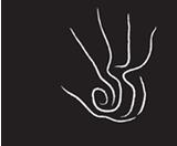 Cyndi Strid logo