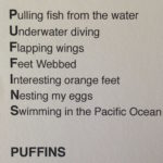 puffin-poem-parkdale-6130-copy